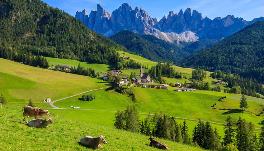 Alpeggio Trentino Alto Adige